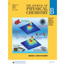 The Journal of Physical Chemistry B: Volume 117, Issue 49