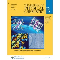 The Journal of Physical Chemistry B: Volume 118, Issue 3