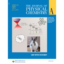 The Journal of Physical Chemistry A: Volume 117, Issue 46