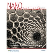 Nano Letters: Volume 19, Issue 11