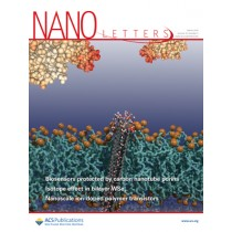 Nano Letters: Volume 19, Issue 3