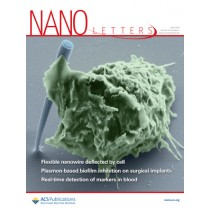 Nano Letters: Volume 19, Issue 4