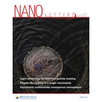 Nano Letters: Volume 19, Issue 5