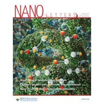 Nano Letters: Volume 19, Issue 9