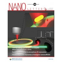Nano Letters: Volume 20, Issue 1