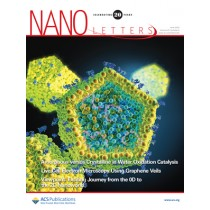 Nano Letters: Volume 20, Issue 6