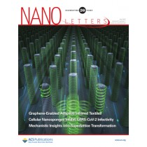 Nano Letters: Volume 20, Issue 7