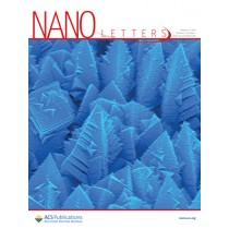 Nano Letters: Volume 21, Issue 1