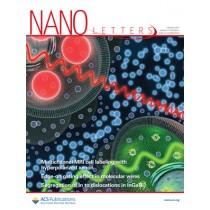 Nano Letters: Volume 15, Issue 2