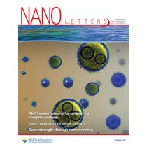 Nano Letters: Volume 16, Issue 12