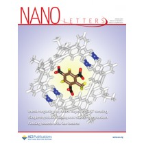 Nano Letters: Volume 17, Issue 1