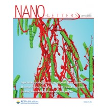 Nano Letters: Volume 17, Issue 6