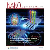 Nano Letters: Volume 18, Issue 6