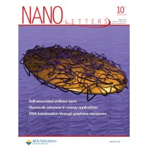 Nano Letters: Volume 10, Issue 8