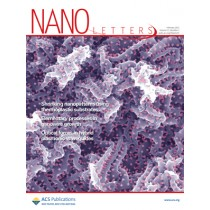Nano Letters: Volume 11, Issue 2