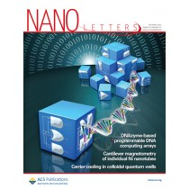 Nano Letters: Volume 12, Issue 12