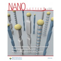 Nano Letters: Volume 13, Issue 2
