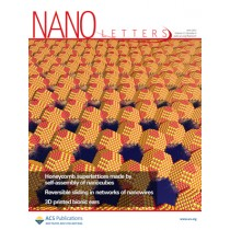 Nano Letters: Volume 13, Issue 6