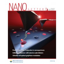 Nano Letters: Volume 14, Issue 2