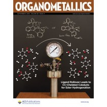Organometallics: Volume 38, Issue 17