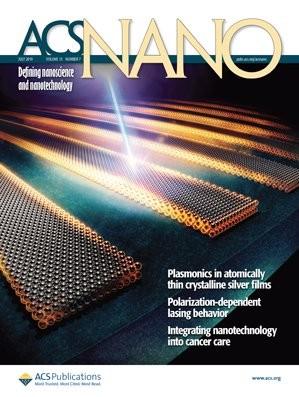 ACS Nano : Volume 13, Issue 7