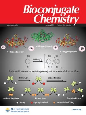 Bioconjugate Chemistry: Volume 22, Issue 1