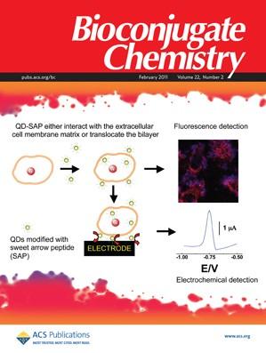 Bioconjugate Chemistry: Volume 22, Issue 2