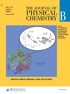 Journal of Physical Chemistry B: Volume 119, Issue 15