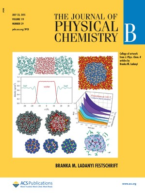 Journal of Physical Chemistry B: Volume 119, Issue 29
