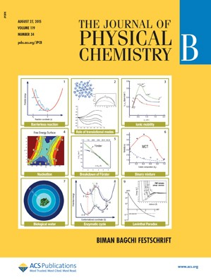 Journal of Physical Chemistry B: Volume 119, Issue 34