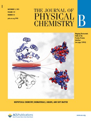 Journal of Physical Chemistry B: Volume 119, Issue 44