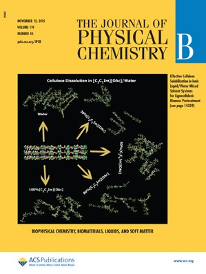 Journal of Physical Chemistry B: Volume 119, Issue 45