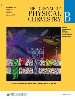 Journal of Physical Chemistry B: Volume 119, Issue 46