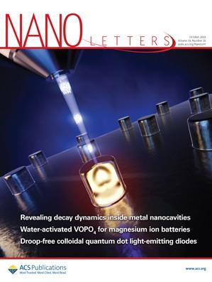 Nano Letters: Volume 18, Issue 10