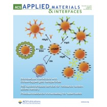 ACS Applied Materials & Interfaces: Volume 6, Issue 23