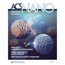 ACS Nano: Volume 14, Issue 11
