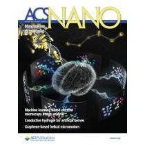 ACS Nano: Volume 14, Issue 12