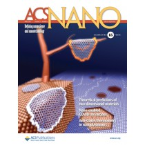 ACS Nano: Volume 15, Issue 4