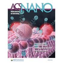 ACS Nano: Volume 11, Issue 6