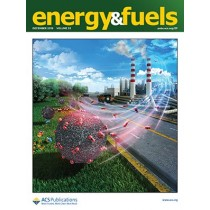 Energy & Fuels: Volume 33, Issue 12