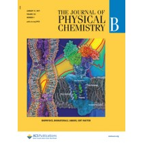 Journal of Physical Chemistry B: Volume 123, Issue 4
