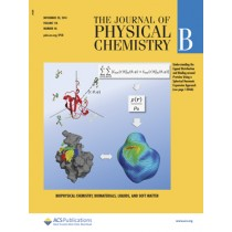 Journal of Physical Chemistry B: Volume 118, Issue 46