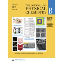 Journal of Physical Chemistry B: Volume 118, Issue 49