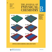 Journal of Physical Chemistry B: Volume 119, Issue 11