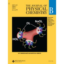 The Journal of Physical Chemistry B: Volume 114, Issue 33