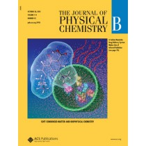 The Journal of Physical Chemistry B: Volume 114, Issue 42