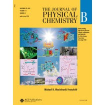 The Journal of Physical Chemistry B: Volume 114, Issue 45