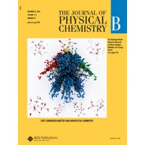 The Journal of Physical Chemistry B: Volume 114, Issue 47