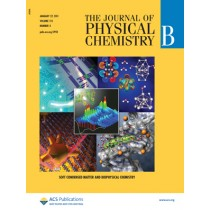 The Journal of Physical Chemistry B: Volume 115, Issue 3