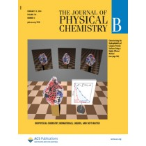 The Journal of Physical Chemistry B: Volume 118, Issue 6